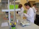 Zajęcia laboratoryjne 21.11.2013 - fotoreportaż
