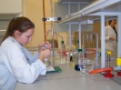 Zajęcia laboratoryjne 25.11.2013 - fotoreportaż