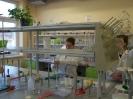Zajęcia laboratoryjne 3.12.2013 - fotoreportaż