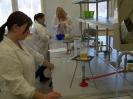 Analitycy oznaczają zawartość cukrów prostych w jabłkach metodą Luffa - Schoorla
